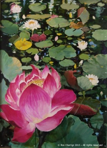Ros Charron Waterlilies Mural 2015 - Panel 2 of 3